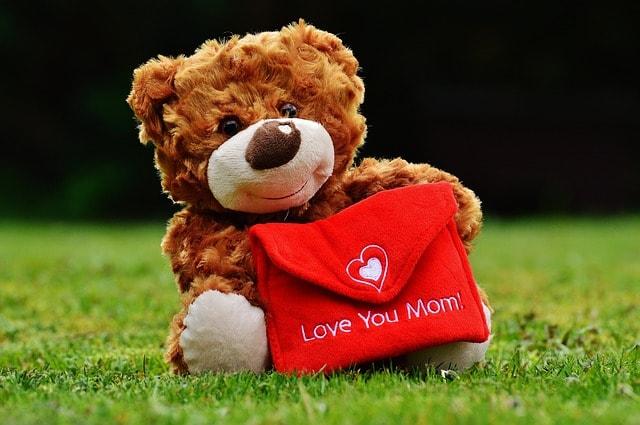teddy-1338887_640